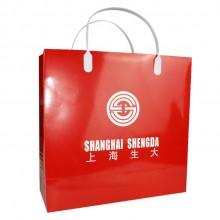 广告纸袋子 宣传覆膜纸袋 手提袋定制 上海生大定制案例