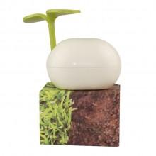 绿意嫩芽收纳盒创意造型桌面收纳盒97礼品