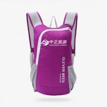 户外可折叠包 旅行轻便双肩包 徒步旅游登山背包